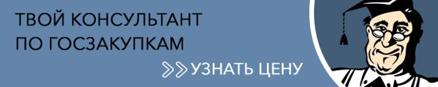 Отчет о закупках у СМП по 223-ФЗ + образец формы на 2019 год
