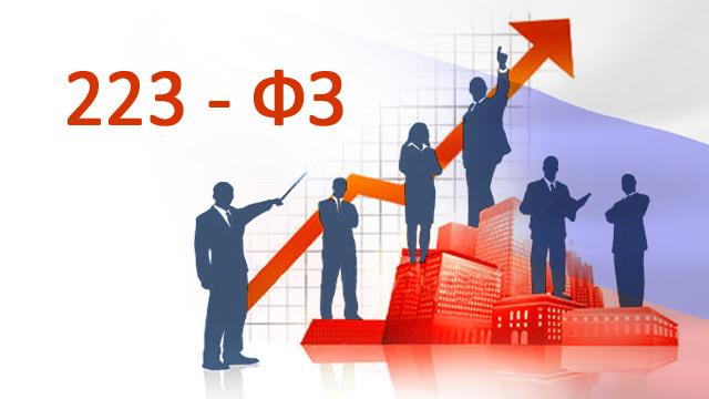 Электронный аукцион по 223-ФЗ: сроки и этапы проведения