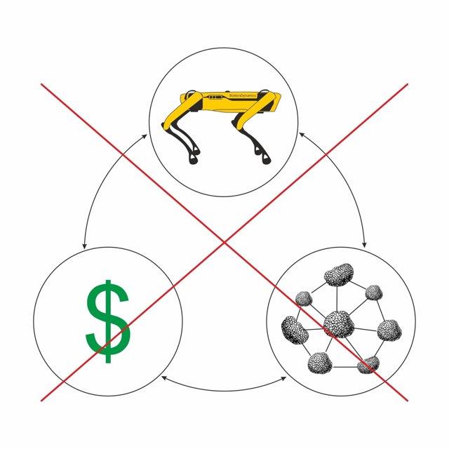Как оценить стартап — инструменты для собственников и потенциальных инвесторов