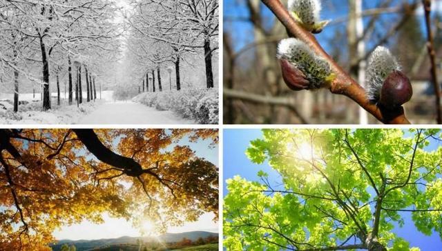 Что делать, когда время года имеет значение – опрос представителей «сезонного» бизнеса